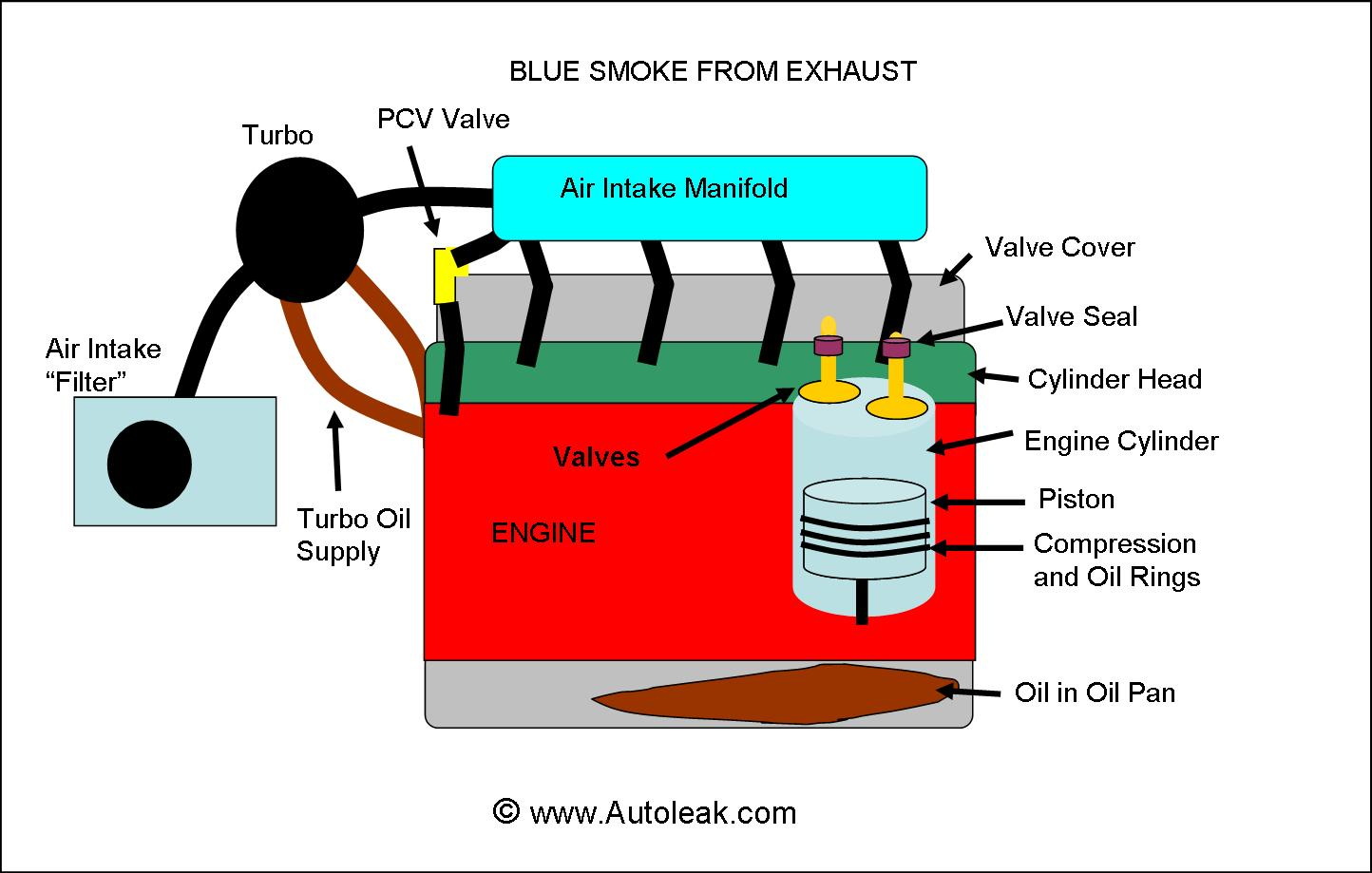 Blue Smoke from Exhaust Pipe